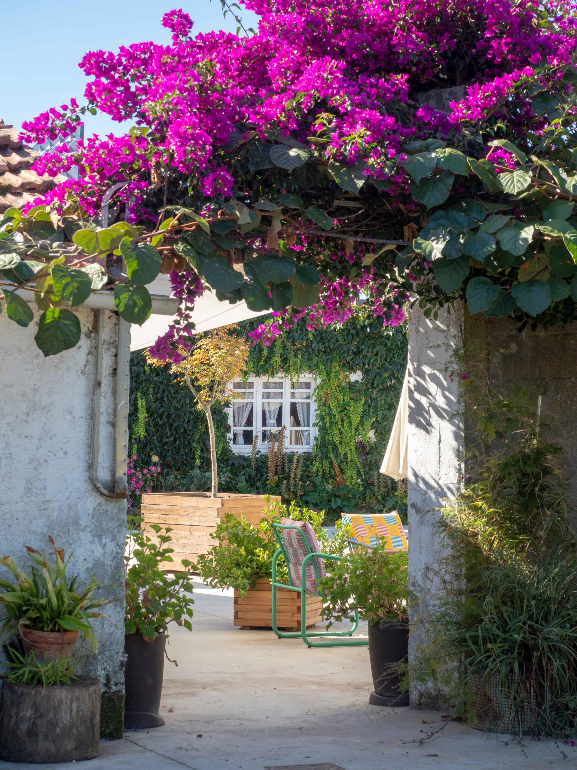 El jardin- Casa Lourido